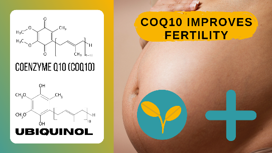 CoQ10 Could Help with Fertility