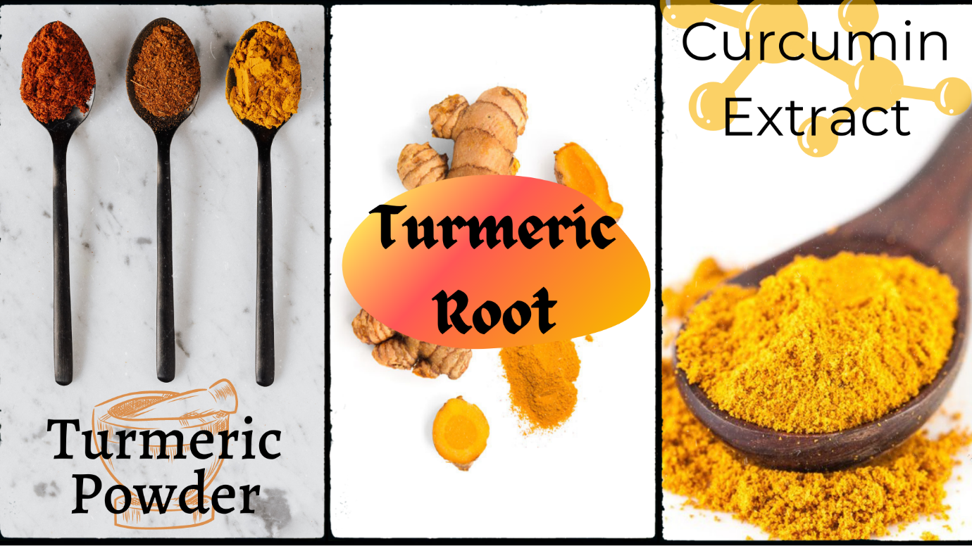 What Are Turmeric and Curcumin