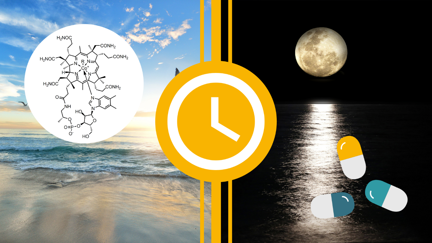 What is the Best Time to Take Vitamin B12
