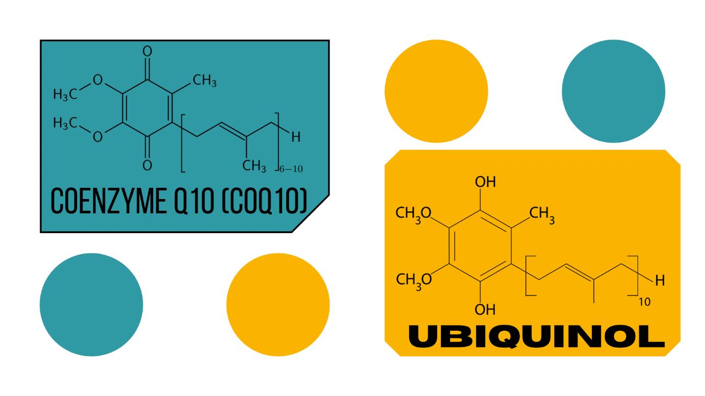 Which Is Better Ubiquinol or Coq10