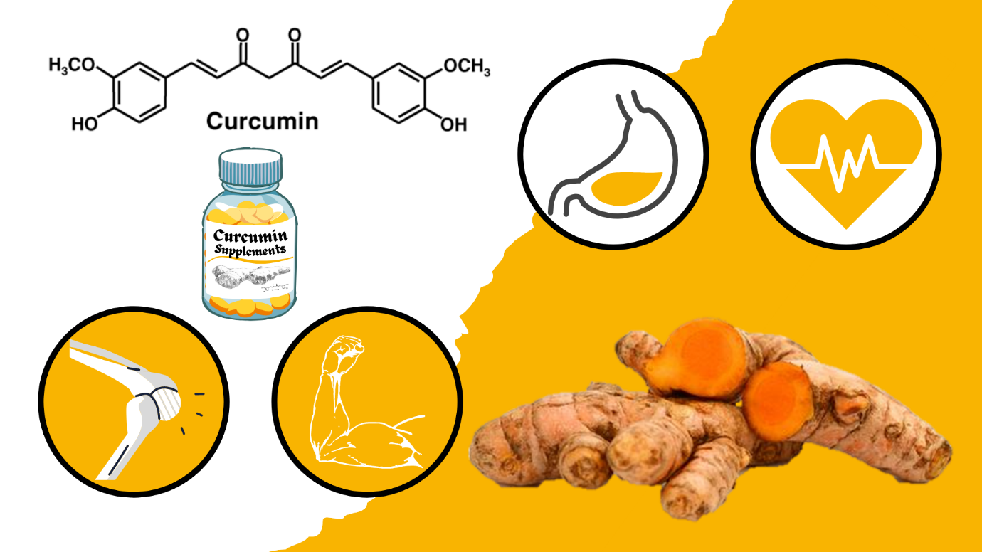 Which is Better – Turmeric of Curcumin