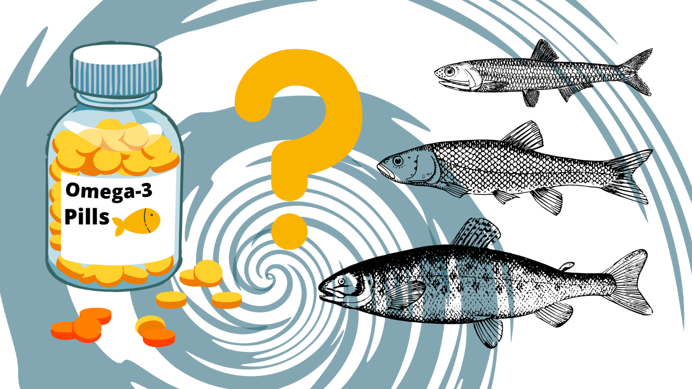 What Is the Best Fish Oil to Take