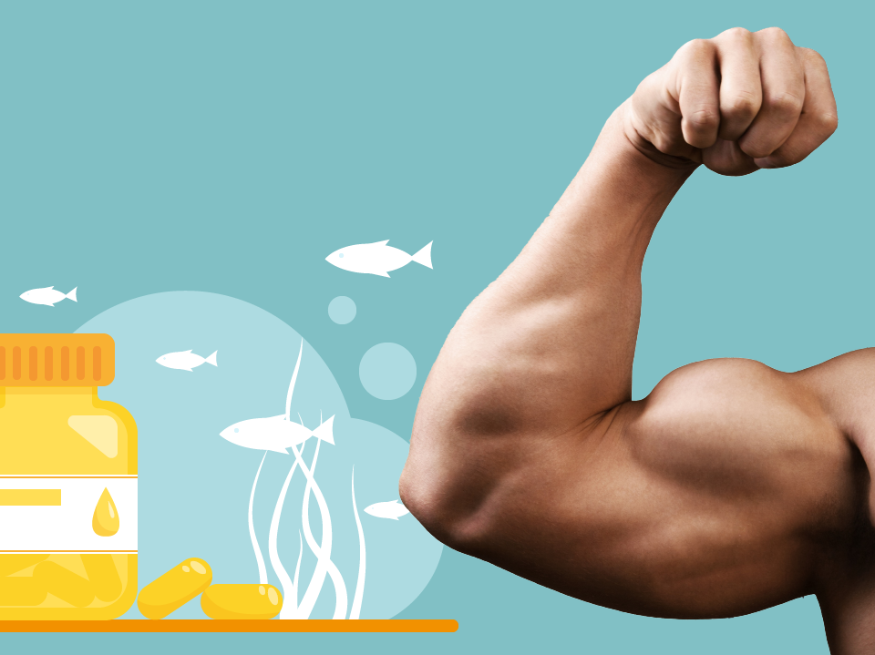 Which Is The Best Fish Oil For Bodybuilding?
