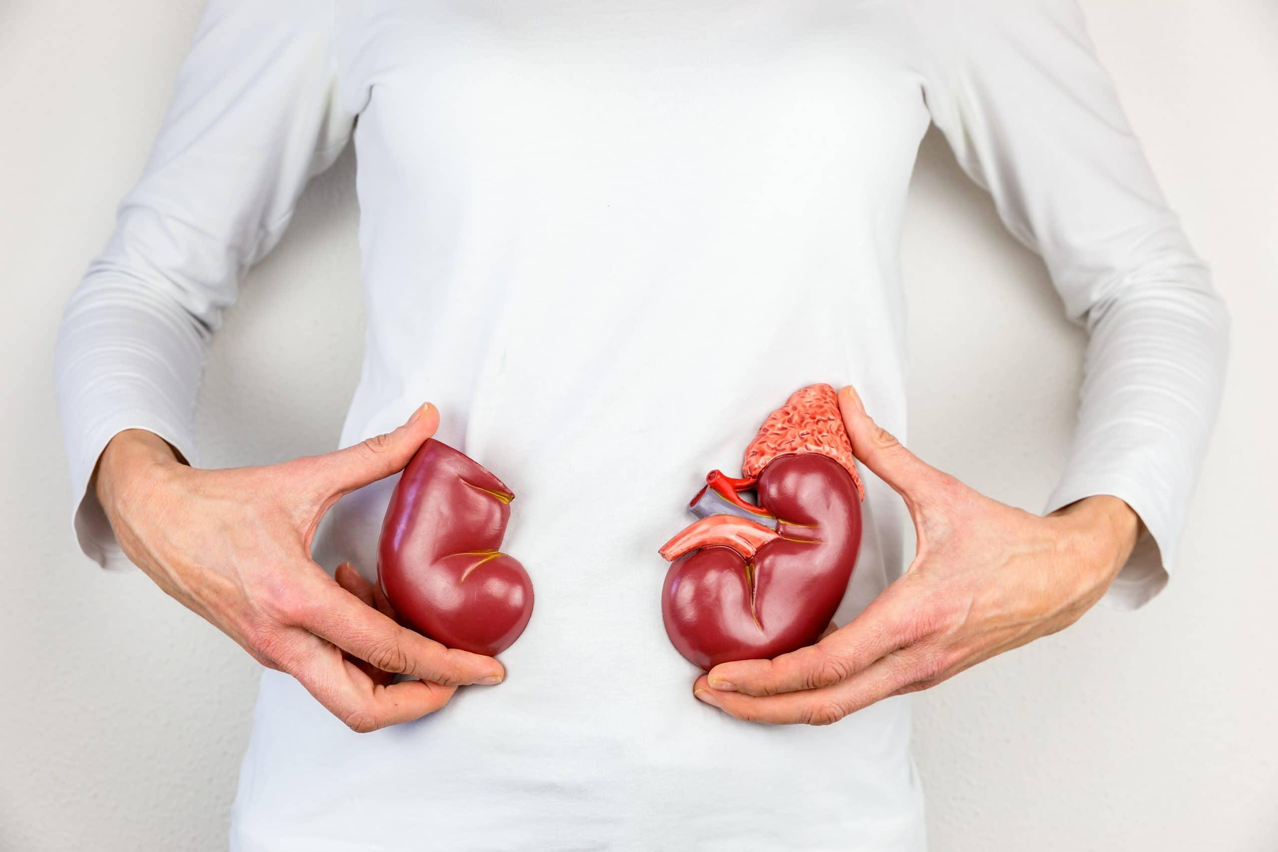 How To Improve Kidney Health