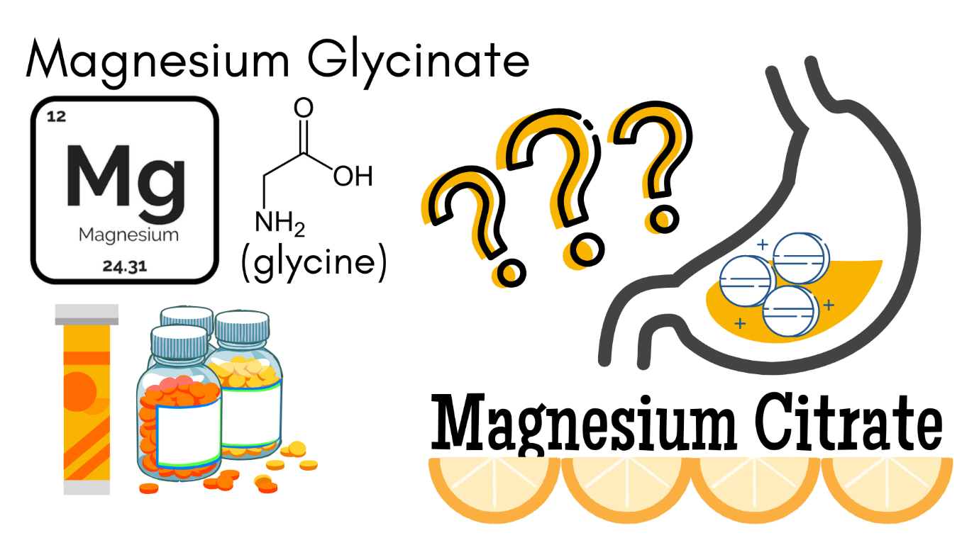 What Form of Magnesium is Best Absorbed by The Body