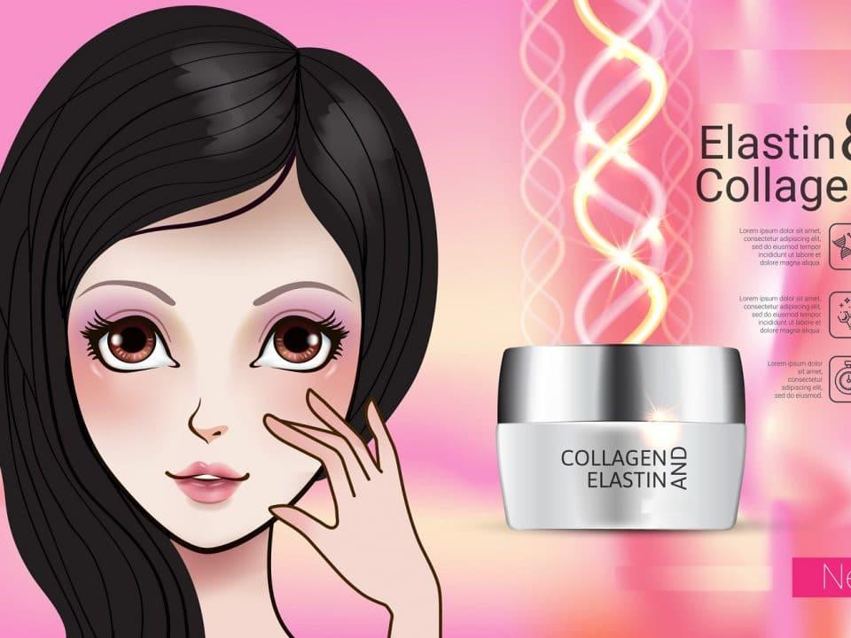 Elastin Supplements