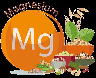 Magnesium 1 e1632219535261