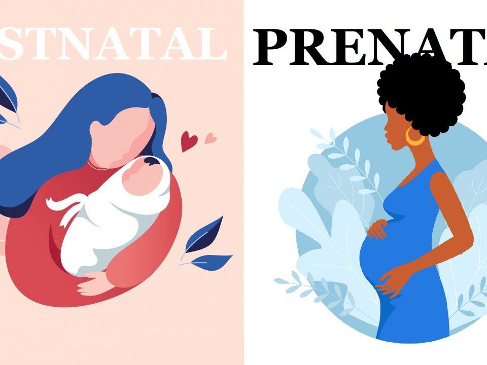 prenatal vs postnatal vitamins